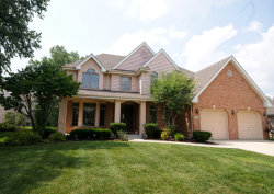 Photo of 8924 Kilkenny Drive, DARIEN, IL 60561 (MLS # 09911929)