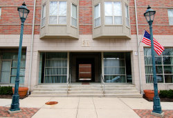 Photo of 57 E Hattendorf Avenue, Unit Number 307, ROSELLE, IL 60172 (MLS # 09912380)
