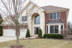 Photo of 713 Goldenrod Court, CRYSTAL LAKE, IL 60014 (MLS # 09915787)