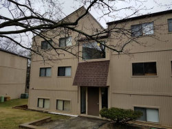 Photo of 55 Vail Colony Street, Unit Number 7, FOX LAKE, IL 60020 (MLS # 09915989)