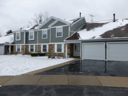 Photo of 601 Eastview Court, Unit Number V1, SCHAUMBURG, IL 60194 (MLS # 09917613)