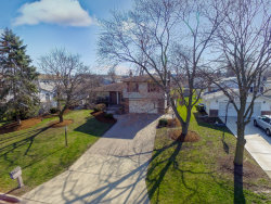 Photo of 473 Eagle View Drive, CAROL STREAM, IL 60188 (MLS # 09919806)