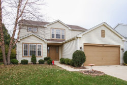 Photo of 114 S Springside Drive, ROUND LAKE, IL 60073 (MLS # 09921355)