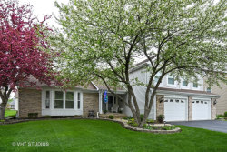 Photo of 1560 S Crowfoot Circle, HOFFMAN ESTATES, IL 60169 (MLS # 09923256)