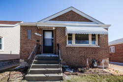 Photo of 13025 S Manistee Avenue, CHICAGO, IL 60633 (MLS # 09930265)