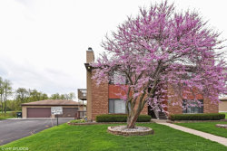 Photo of 995 Kane Street, Unit Number 995, SOUTH ELGIN, IL 60177 (MLS # 09945777)