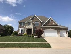 Photo of 21304 S Forest View Drive, SHOREWOOD, IL 60404 (MLS # 09946875)