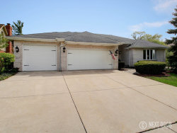 Photo of 10737 Tower Drive, ORLAND PARK, IL 60467 (MLS # 09952205)