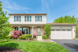 Photo of 1067 Buckskin Lane, CAROL STREAM, IL 60188 (MLS # 09955448)