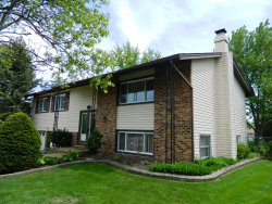 Photo of 1433 Armstrong Lane, ELK GROVE VILLAGE, IL 60007 (MLS # 09955565)