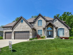 Photo of 14334 Fawn View Circle, ORLAND PARK, IL 60467 (MLS # 09956841)