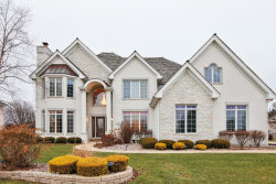 Photo of 105 Ruffled Feathers Drive, LEMONT, IL 60439 (MLS # 09958494)