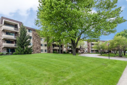 Photo of 3350 N Carriageway Drive, Unit Number 105, ARLINGTON HEIGHTS, IL 60004 (MLS # 09958878)