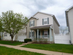 Photo of 61 Freesia Court, Unit Number 61, ROMEOVILLE, IL 60446 (MLS # 09958896)
