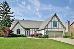 Photo of 111 Wilcox Drive, BARTLETT, IL 60103 (MLS # 09978474)