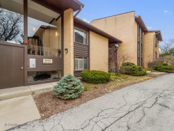 Photo of 6176 Knoll Lane Court, Unit Number 202, WILLOWBROOK, IL 60527 (MLS # 09979905)