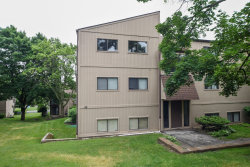Photo of 55 Vail Colony Street, Unit Number 9, FOX LAKE, IL 60020 (MLS # 09983500)