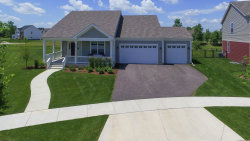 Photo of 240 Water Lily Lane, ELGIN, IL 60124 (MLS # 09992757)