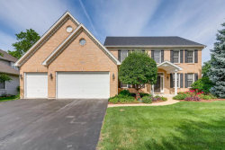 Photo of 3003 Tall Grass Drive, NAPERVILLE, IL 60564 (MLS # 09993923)