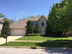 Photo of 2715 Ginger Woods Drive, AURORA, IL 60502 (MLS # 09994298)