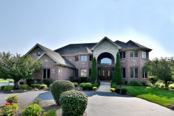 Photo of 9 N771 Old Mill Court, ELGIN, IL 60124 (MLS # 09995125)