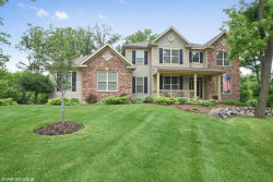 Photo of 9637 Thousand Oaks Circle, SPRING GROVE, IL 60081 (MLS # 10001020)
