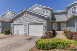 Photo of 10725 E Timer Drive, Unit Number 10725, HUNTLEY, IL 60142 (MLS # 10009967)