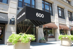 Photo of 600 S Dearborn Street, Unit Number 701, Chicago, IL 60605 (MLS # 10013331)