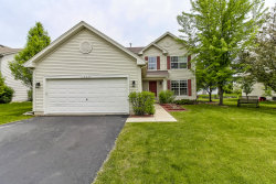 Photo of 1439 S Bayport Lane, ROUND LAKE, IL 60073 (MLS # 10015203)