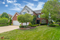 Photo of 14212 Burnley Drive, ORLAND PARK, IL 60467 (MLS # 10016655)