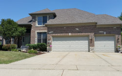 Photo of 761 W Thornwood Drive, SOUTH ELGIN, IL 60177 (MLS # 10017692)