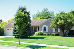 Photo of 1008 Willowbrook Drive, WHEELING, IL 60090 (MLS # 10017708)