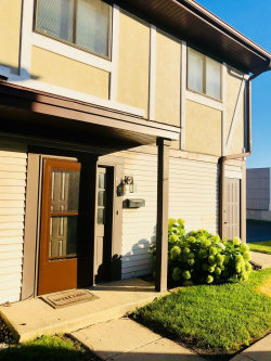 Photo of 6084 Fremont Drive, Unit Number 6084, HANOVER PARK, IL 60133 (MLS # 10024618)