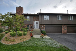 Photo of 8923 Clearview Drive, Unit Number 8923, ORLAND PARK, IL 60462 (MLS # 10053663)