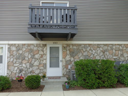 Photo of 1013 Glouchester Harbor, Unit Number 1013, SCHAUMBURG, IL 60193 (MLS # 10054813)