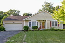 Photo of 617 Carriage Hill Road, ISLAND LAKE, IL 60042 (MLS # 10066023)