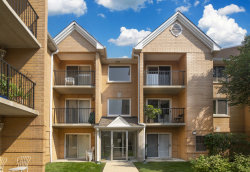 Photo of 8710 W Evelyn Lane, Unit Number 104, CHICAGO, IL 60656 (MLS # 10079289)
