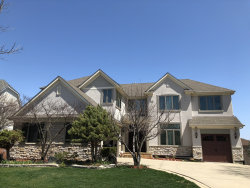 Photo of 311 Colonial Drive, VERNON HILLS, IL 60061 (MLS # 10084728)
