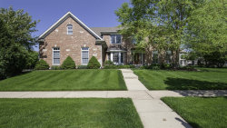 Photo of 584 W Thornwood Drive, SOUTH ELGIN, IL 60177 (MLS # 10085703)