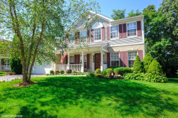 Photo of 528 N Overlook Trail, ROUND LAKE, IL 60073 (MLS # 10087547)
