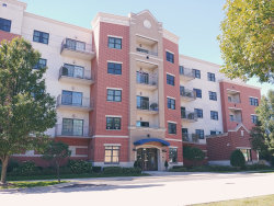 Photo of 14 S Prospect Street, Unit Number 201, ROSELLE, IL 60172 (MLS # 10091681)