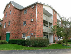 Photo of 1303 Cunat Court, Unit Number 2C, LAKE IN THE HILLS, IL 60156 (MLS # 10100541)