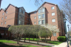 Photo of 17 E Hattendorf Avenue, Unit Number 501, ROSELLE, IL 60172 (MLS # 10102862)