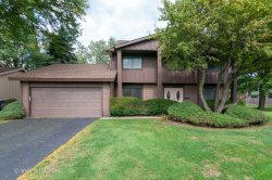 Photo of 335 High Point Court, ROSELLE, IL 60172 (MLS # 10104189)