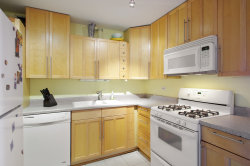 Tiny photo for 850 N Dewitt Place, Unit Number 17G, CHICAGO, IL 60611 (MLS # 10106811)