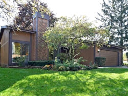 Photo of 519 Bryce Trail, ROSELLE, IL 60172 (MLS # 10108093)