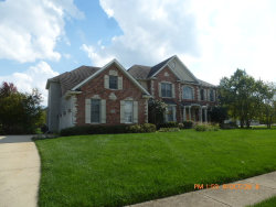 Photo of 4170 Prairie Crossing Drive, ST. CHARLES, IL 60175 (MLS # 10110694)