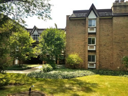 Photo of 360 Claymoor Street, Unit Number 2F, HINSDALE, IL 60521 (MLS # 10112836)
