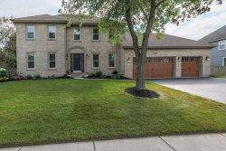 Photo of 2260 River Woods Drive, NAPERVILLE, IL 60565 (MLS # 10115097)