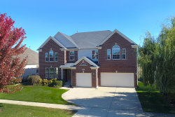 Photo of 1407 S Wild Meadow Road, ROUND LAKE, IL 60073 (MLS # 10115921)